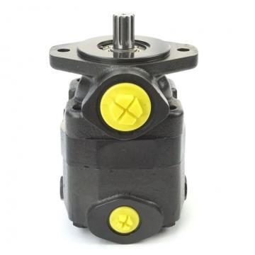 V20 Hydraulic Vane Pump ( Vickers, Shertech V20,V20f, V20p for Mobile Equipment Like ...