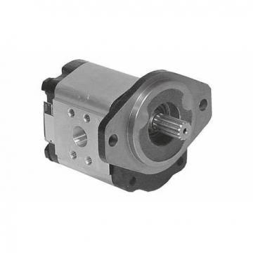 Parker Denison P24 P30 piston hydraulic vane pumps