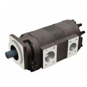 C101 Dump Pump