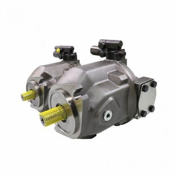 Rexroth A4vso Duplex Pump 40/71/125/180/250/355/500 High Pressre Piston Pump #1 image