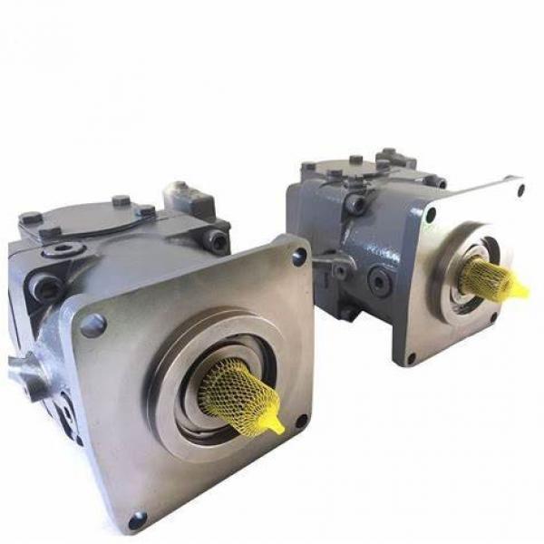 Rexroth A11vo Series A11vo35 A11vo50 A11vo60 A11vo75 A11vo95 A11vo130 Pump Spare Parts #1 image