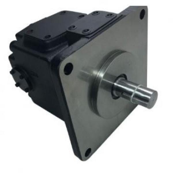 Replacement Hydraulic Vane Pump Parts Cartridge Kits Yuken PV2r #1 image