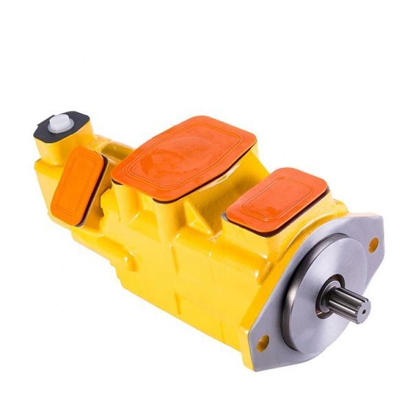 PV2r 17 Gallon 21gallon Hydraulic Pumps #1 image