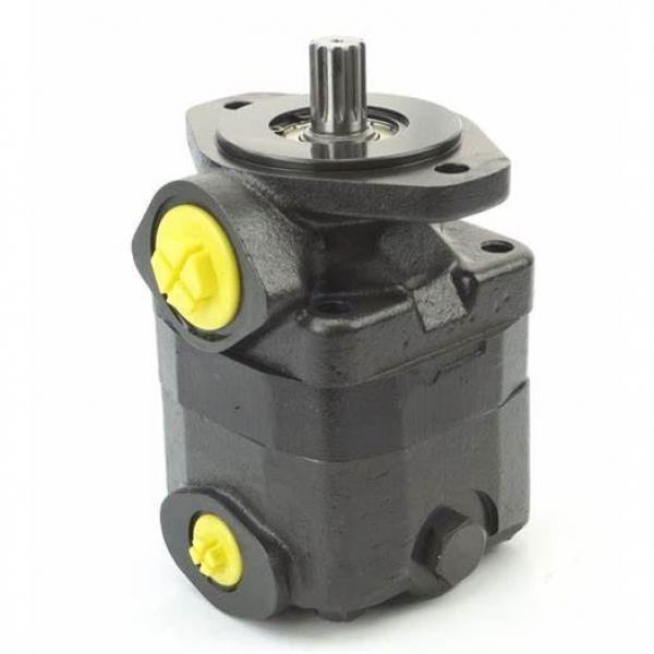 Replacement Vickers Double Vane Pump 2520V, 2525V, 3520V, 3525V, 4520V, 4525V, 4535V #1 image