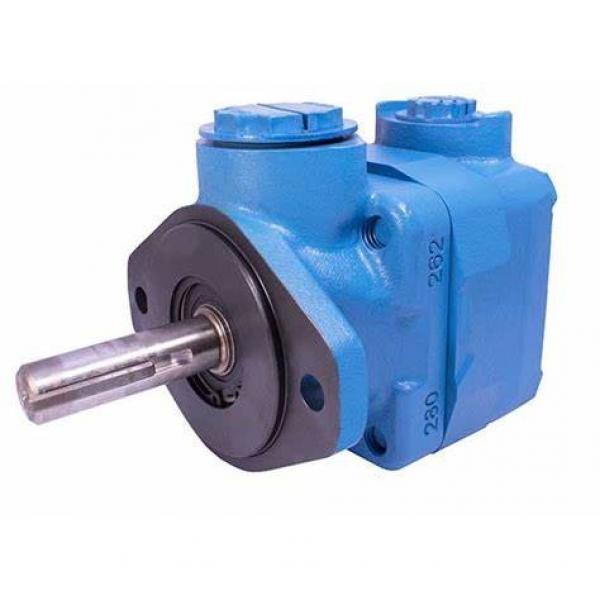 V10, V20 Vickers Vane Pump and Cartridge Kits #1 image