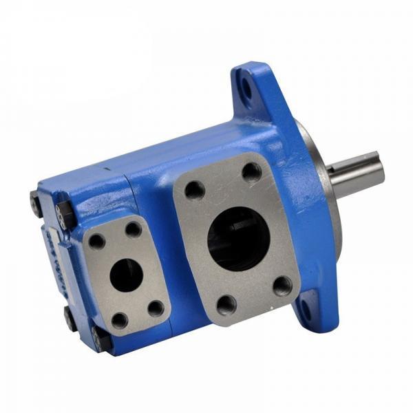 Eaton Vickers V10 V20 V10f V10p V20f V20p V2010 V2020 V2010f V2020f V2010p V2020p V230 Power Steering Vane Pump #1 image