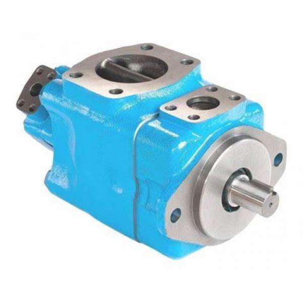 Vickers Hydraulic Vane Pump V10 V20 Series for Sale #1 image