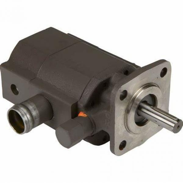 USA Top Quality PGP Series PGP500 PGP517 PGP505 PGP600 Hydraulic Parker Gear Pump #1 image