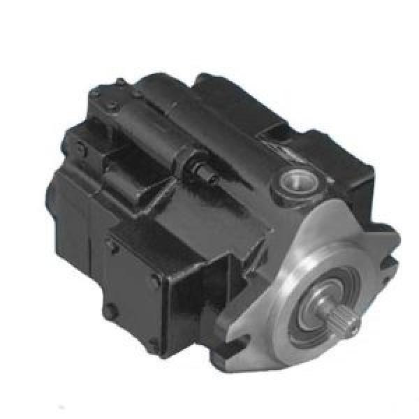 JCB backhoe loader PARKER PGP620 20/925588 20/925356 20/925355 20/925591 20/925613 20/925732 three stage triple gear pump #1 image