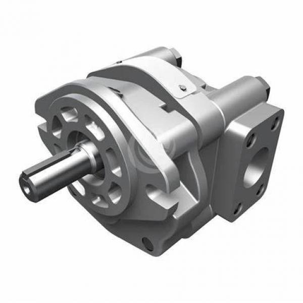 Donjoy lobe pumps stainless steel sanitary food grade rotor oil pump #1 image