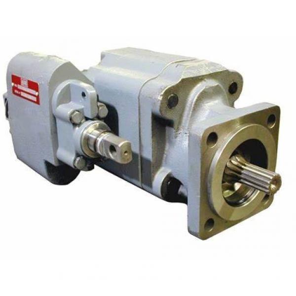 Rotary Vane Italian Water Pump #1 image