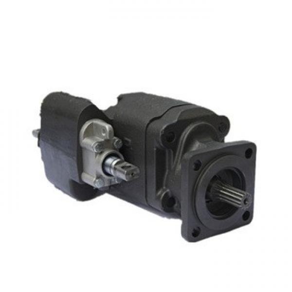 Gear Pump, Dump Truck Parts, Lifting Pump, Heat Pump (C102) #1 image