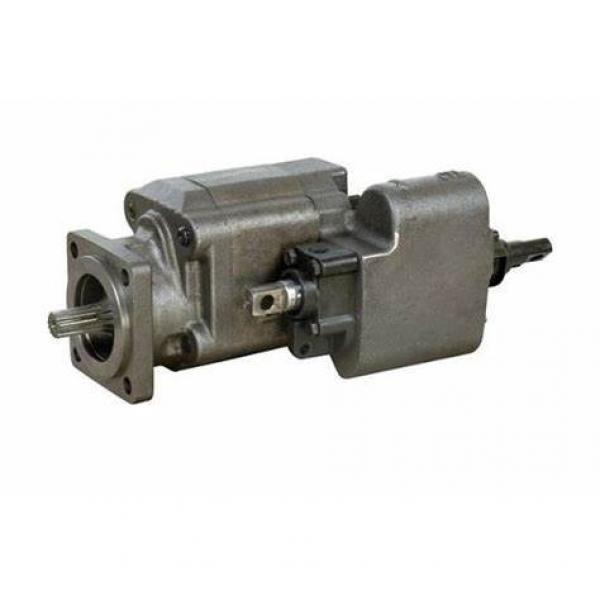 Lifting Hydraulic Gear Pump (C101) #1 image