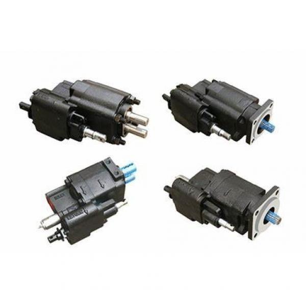 C101/102 Oil Driven Gear Pump Transmiss Gear #1 image