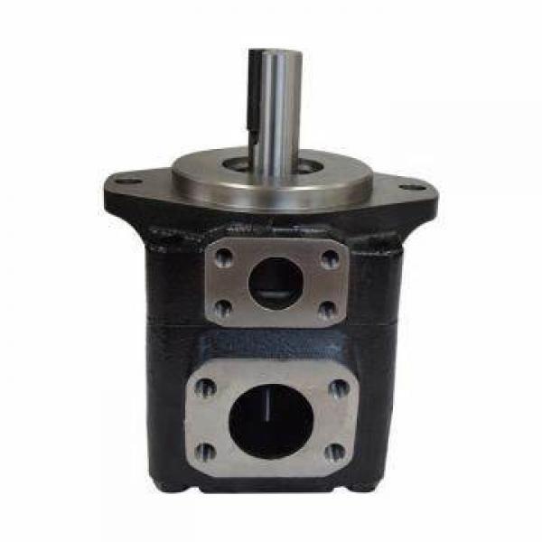 Denison Double Vane Pump T6cc T6DC T6ec T6ED #1 image