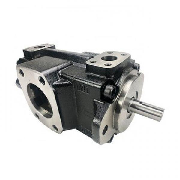 Equivalent T7b, T7BS Denison Vane Pump #1 image